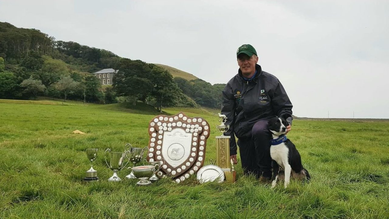 Kerry duo named Supreme Champion at International Sheep Dog Trials