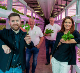 Mushroom producer turned vertical farmer signs contract