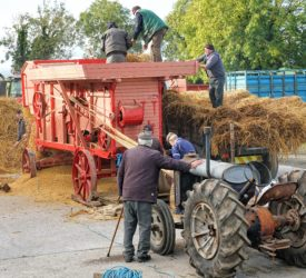 Focus: A family thresher brought back to life in Tipperary