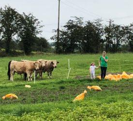 Cavan woman keen to give back through social farming
