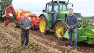 Maincrop potato harvest: Significant variation in yields reported