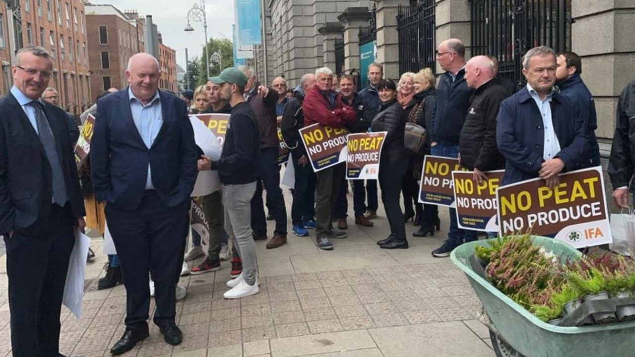 Horticulture sector 'abandoned': Growers protest in Dublin
