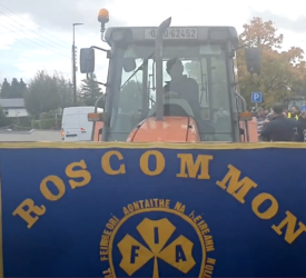 IFA 'Day of Rallies' continues in Roscommon