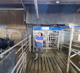 Dairy Focus: Milk quality to the fore in robotic milking herd
