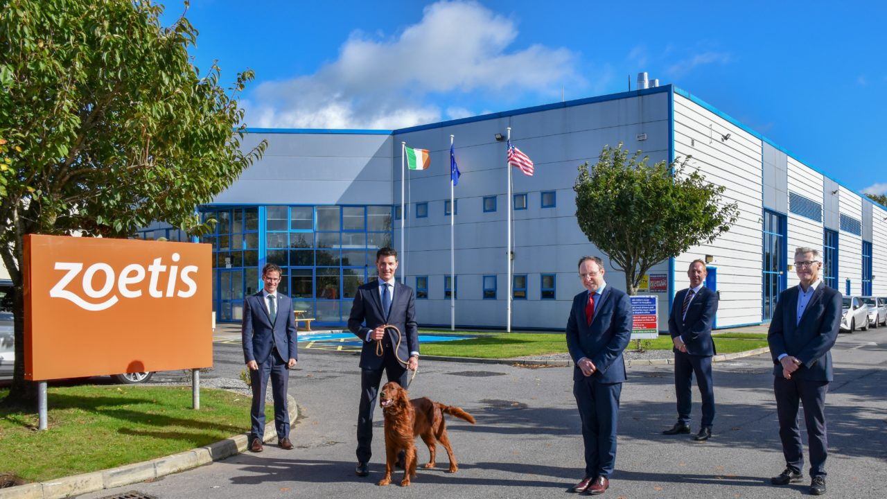 Zoetis to create up to 100 jobs  as Offaly facility to expand